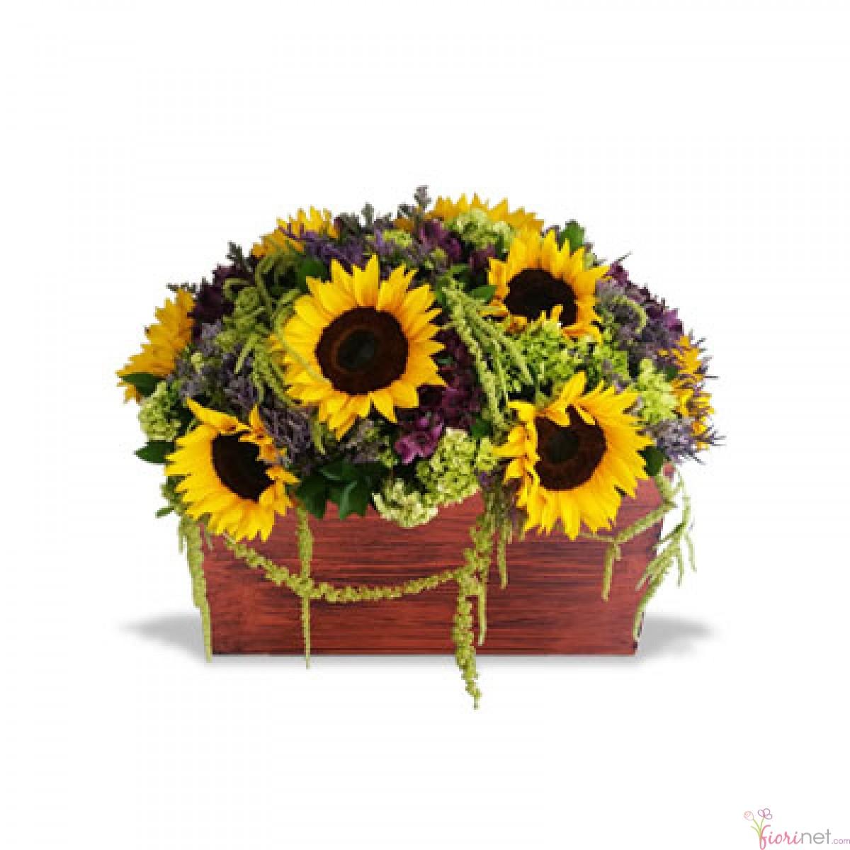 Flores Fiorinet 174 Florerias Quot Girasoles Vintage Quot Envio