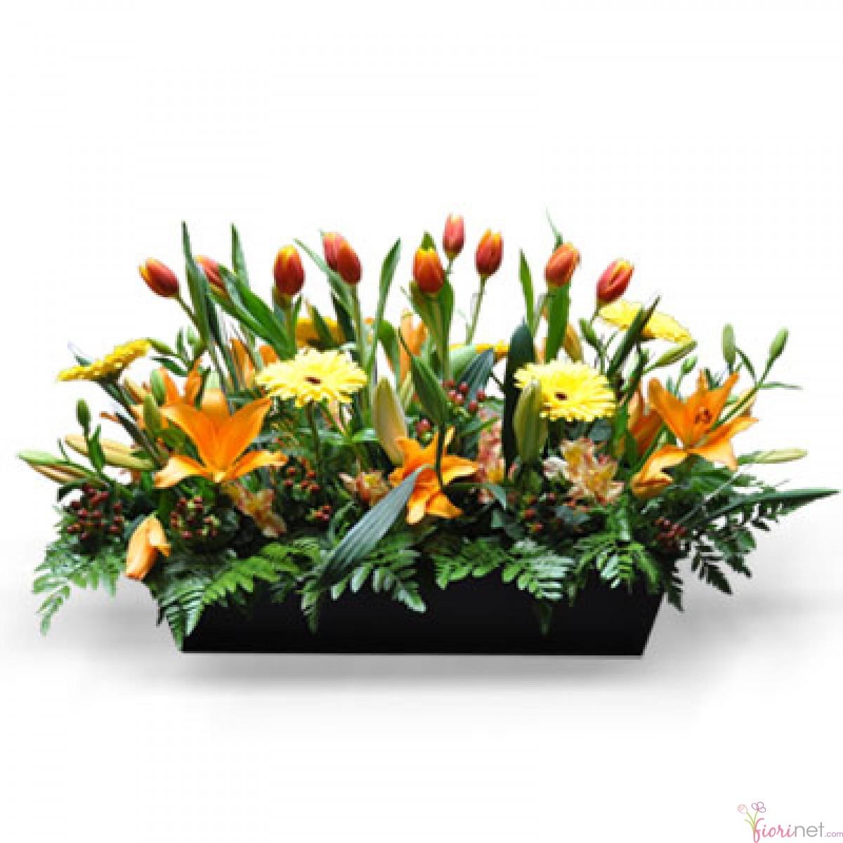 Flores fiorinet florerias jardinera de tulipanes - Jardineras de colores ...