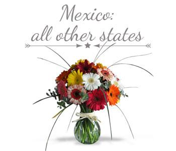 Mexico all other states