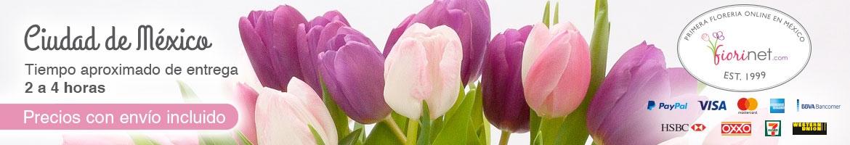 Flores Fiorinet Florerias Entrega A Domicilio En Df